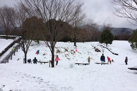 snow (5)